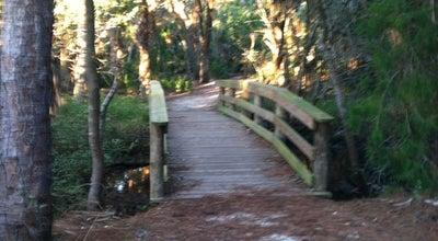 Photo of Trail Hammock Park at 1900 San Mateo Drive, Dunedin, FL 34698, United States
