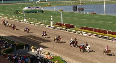 Photo of Racetrack Gulfstream Park Racing and Casino at 901 S Federal Hwy, Hallandale Beach, FL 33009, United States