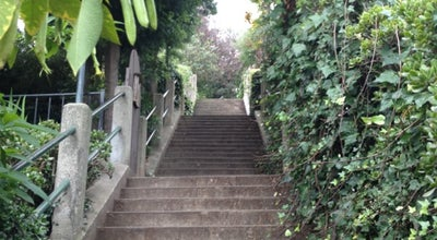 Photo of Trail Coit Steps at Pioneer Park, San Francisco, CA, United States