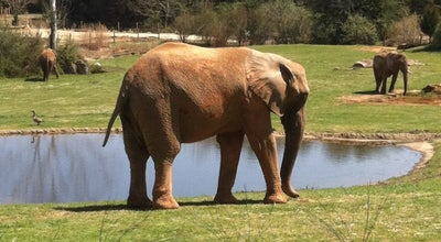Photo of Zoo North Carolina Zoo at 4401 Zoo Pkwy, Asheboro, NC 27205, United States