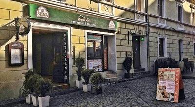 Photo of Cocktail Bar Rasta Bar Jamaica at Str. Michael Weiss Nr. 29, Brașov 500024, Romania