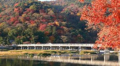 Photo of Japanese Restaurant Arashiyama Nomura at 右京区嵯峨天龍寺造路町35-20, Kyoto 616-8384, Japan