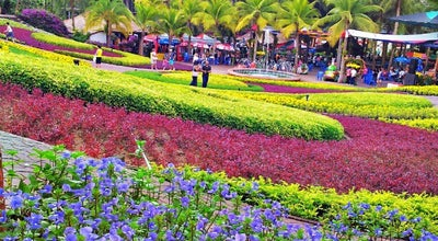 Photo of Botanical Garden Butterfly Hill at Nong Nooch Tropical Botanical Garden, Sattahip, Thailand