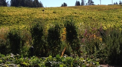 Photo of Tourist Attraction Lynmar Estate Winery at 3909 Frei Rd, Sebastopol, CA 95472, United States