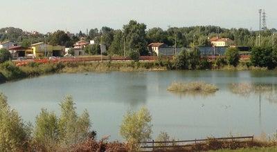 Photo of Lake Lago di Padova at Via Delle Grazie, Padova 35129, Italy
