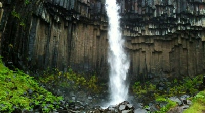 Photo of Other Great Outdoors Svartifoss Waterfall at Skaftafell, Iceland