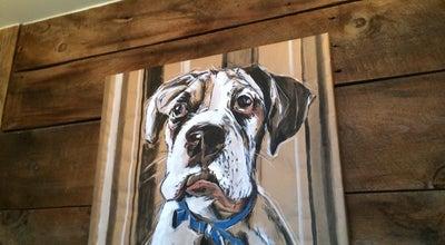 Photo of American Restaurant The Grey Dog at 49 Carmine St, New York City, NY 10014, United States