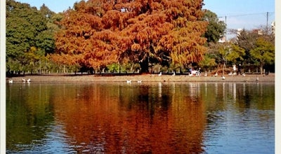 Photo of Lake Lago de Regatas de Palermo at Av. De Los Ombues, Palermo, Argentina