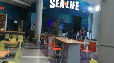 Photo of Aquarium SEA LIFE Orlando Aquarium at 8449 International Drive, Orlando, FL 32819, United States