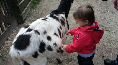Photo of Nature Preserve Kinderboerderij Mikerf at Mikhof 25, Brasschaat 2930, Belgium