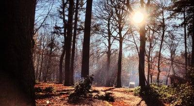Photo of Forest Provinciaal Domein Tillegembos at Tillegemstraat 83, Sint-Michiels 8200, Belgium