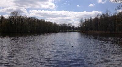 Photo of Lake Swarte Moor See at Oldenburg, Germany