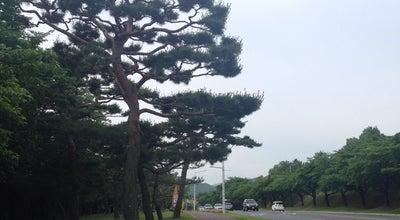 Photo of Trail 보문단지 산책로 at 신평동, 경주시, South Korea