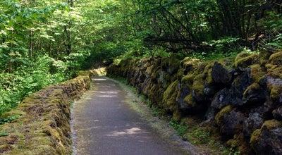 Photo of Trail Bellevue Trail at Interstate 90 Trail Walk, Bellevue, WA 98008, United States
