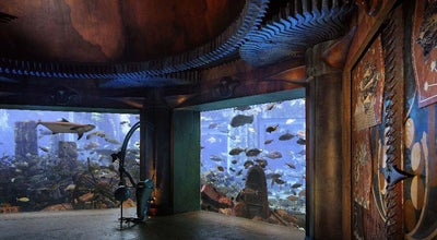 Photo of Aquarium The Lost Chambers Aquarium at Crescent Dr, Dubai 211222, United Arab Emirates
