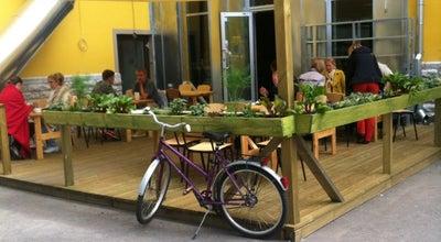 Photo of Modern European Restaurant Kohvik Sesoon at Niine 11, Tallinn 10414, Estonia