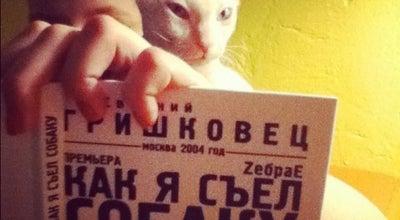 Photo of Arcade Cat in Flat at Ул. Комсомольская, 6, Korolev 141071, Russia