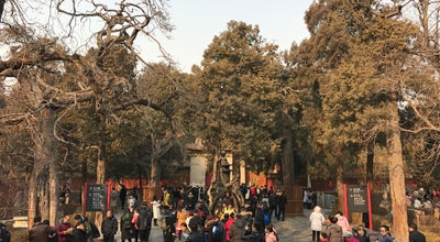 Photo of Garden 御花园 Imperial Garden at 4 Jingshan, Beijing, 北京 100000, China