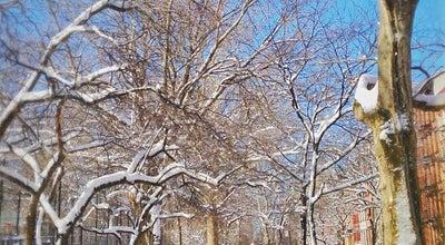 Photo of Park Tompkins Square Park at E 7th St To E 10th St, New York, NY 10009, United States