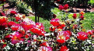 Photo of Garden Memorial Rose Garden at Sacramento, CA 95819, United States