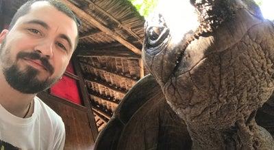 Photo of Park Tortoise Santuary at Tanzania