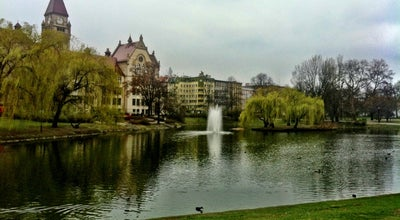 Photo of Park Park Tołpy at Ul. Wyszyńskiego, Wrocław, Poland