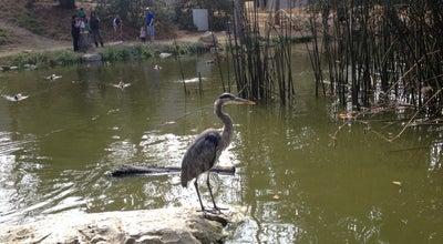 Photo of Nature Preserve Hopkins Wilderness Park at 1102 Camino Real, Redondo Beach, CA 90277, United States