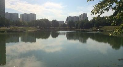 Photo of Lake Малый Солнцевский пруд at 5-я Прудная Ул., Москва, Russia