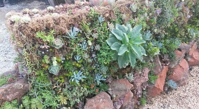 Photo of Garden Succulent Gardens at 2133 Elkhorn Rd, Castroville, CA 95012, United States