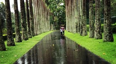 Photo of Botanical Garden Royal Botanical Gardens at Peradeniya Road, Peradeniya 20400, Sri Lanka