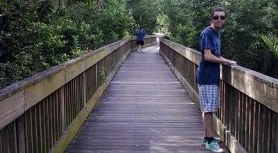 Photo of Trail Sawgrass Lake County Park at 7400 25th St N, Saint Petersburg, FL 33702, United States