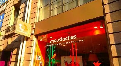 Photo of Pet Store Moustaches at 32 Rue Des Archives, Paris 75004, France