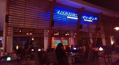 Photo of Seafood Restaurant Aquarium Restaurant Yas Marina at Yas Marina Yas Leisure Dr, Abu Dhabi 130001, United Arab Emirates