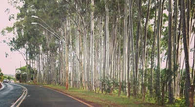Photo of Trail Mata de Santa Tereza at Ribeirao Preto, Brazil