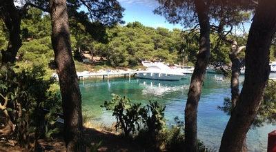 Photo of Harbor / Marina ACI Marina Palmižana at Sv. Klement, Croatia