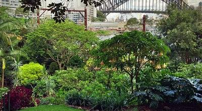 Photo of Botanical Garden Wendy Whiteley's Secret Garden at Near Luna Park, North Sydney, Ne 2060 N.S.W, Australia