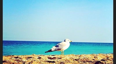 Photo of Beach Surfside Park at 1278-1342 S Ocean Dr, Fort Pierce, FL 34949, United States