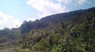 Photo of Trail Gunung Bentang at Jl. Padalarang, Jawa Barat, Indonesia