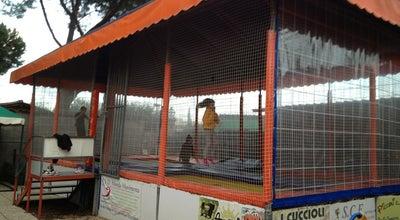 Photo of Tourist Attraction Baby Luna Park at Via Di Grotta Perfetta 555, Rome 00142, Italy