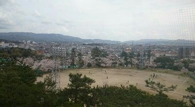 Photo of Theme Park 南公園 遊園地 at 若松町萱林1-1, 岡崎市 444-0826, Japan