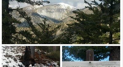 Photo of Trail Icehouse Canyon via Timber Mountain at Mt Baldy Rd, Mt Baldy, CA 91759, United States
