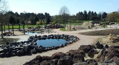 Photo of Botanical Garden Loki-Schmidt-Garten | Neuer Botanischer Garten at Ohnhorststr. 18, Hamburg 22609, Germany