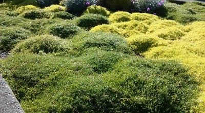 Photo of Botanical Garden Evergreen Arboretum & Gardens at 145 Alverson Boulevard, Everett, WA 98201, United States