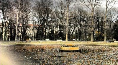 Photo of Lake Езерото с лилиите (The Lily Lake) at Борисова Градина, София, Bulgaria