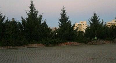 Photo of Trail Dogal Park at 100. Yıl Mh. 85183. Sk., Adana 01260, Turkey