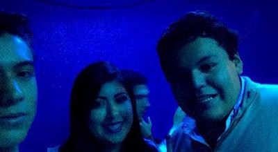 Photo of Pool Hall billar liverpool at Mexico
