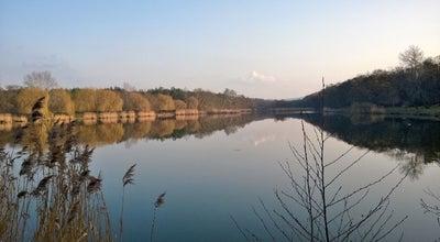 Photo of Lake Majki-tó at Oroszlány, Hungary