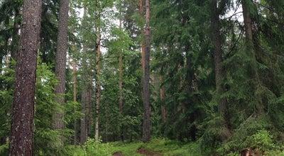 Photo of Trail Lohjanharjun Ulkoilureitit at Finland