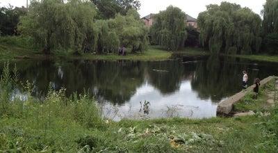 Photo of Lake Озеро Кірпічка at Ukraine