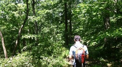 Photo of Trail Lenape Trail at Branch Brook Park, Newark, NJ 07104, United States